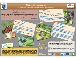 Faunistic biodiversity